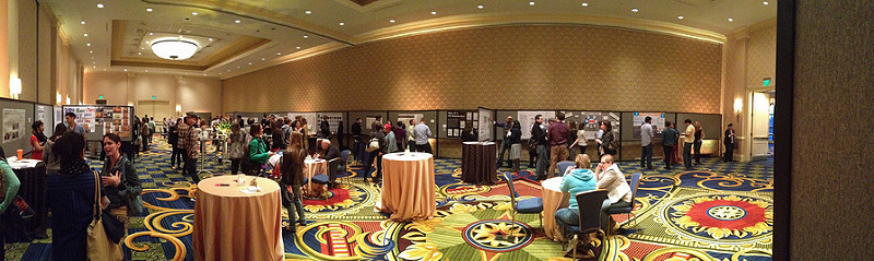 Poster Night at IA Summit 2013